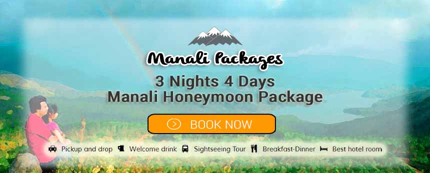 3 Nights 4 Days Manali Honeymoon Package