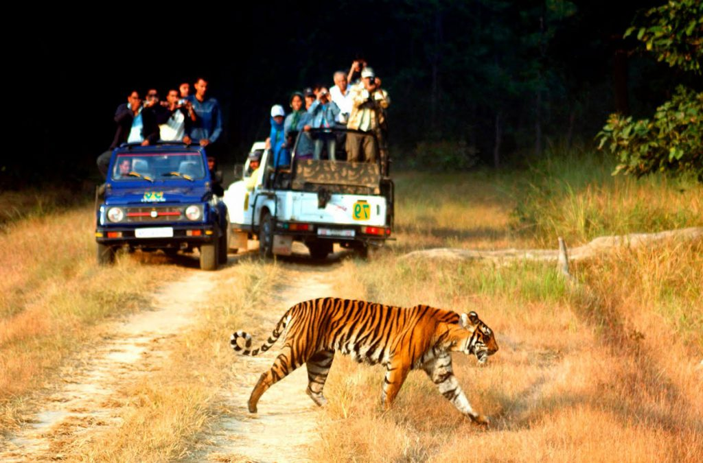5-most-family-holidays-destinations-in-india-to-experience-adventure