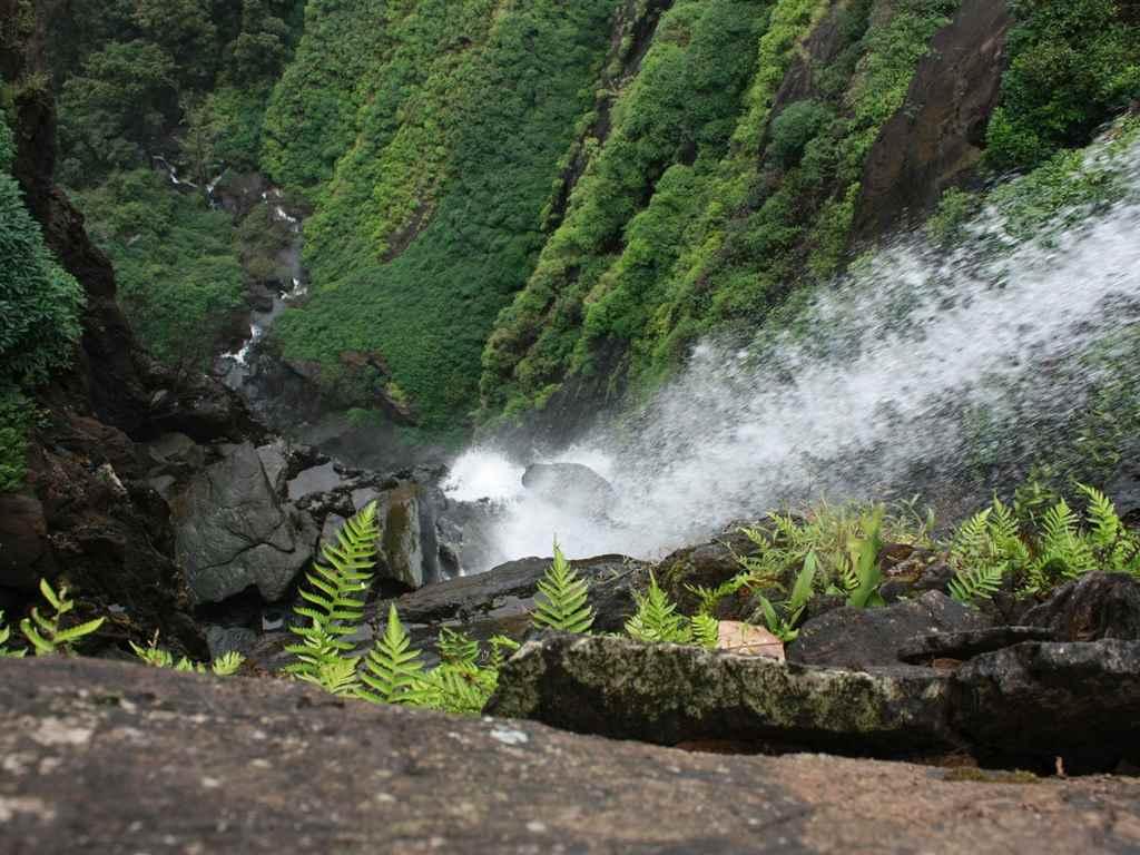 Agumbe Monsoon Holidays