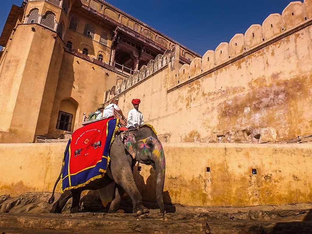 Forts tour Jaipur