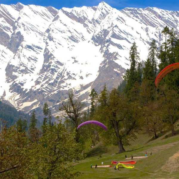 Honeymoon-Packages-Shimla-Kullu-Manali (11)