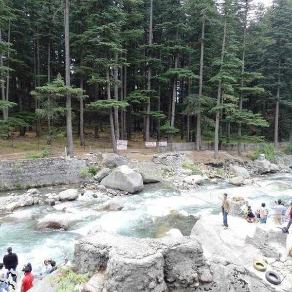 Honeymoon-Packages-Shimla-Kullu-Manali (26)
