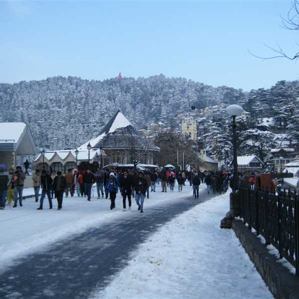 Honeymoon-Packages-Shimla-Manali (35)