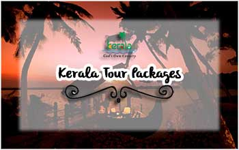 Kerala Packages