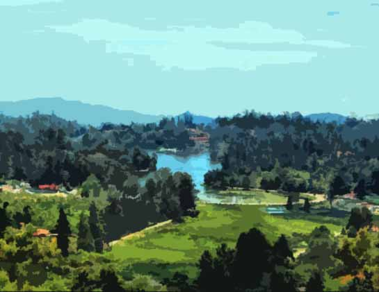 Kodaikanal Honeymoon Packages