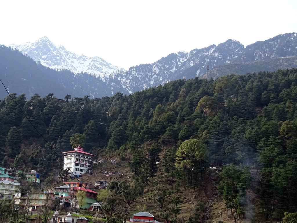 Hills Of Mcleodganj