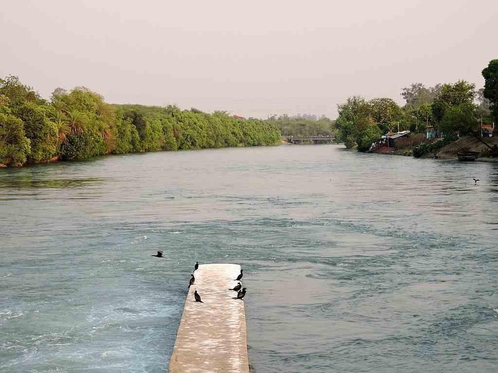 Nangal wetlands Offbeat Place