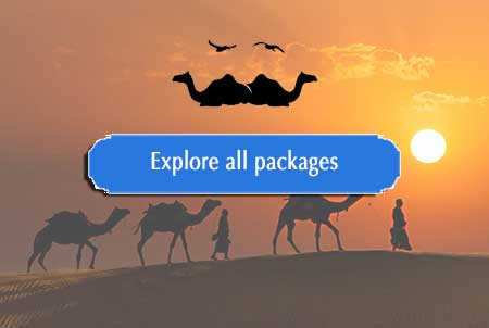Rajasthan Packages