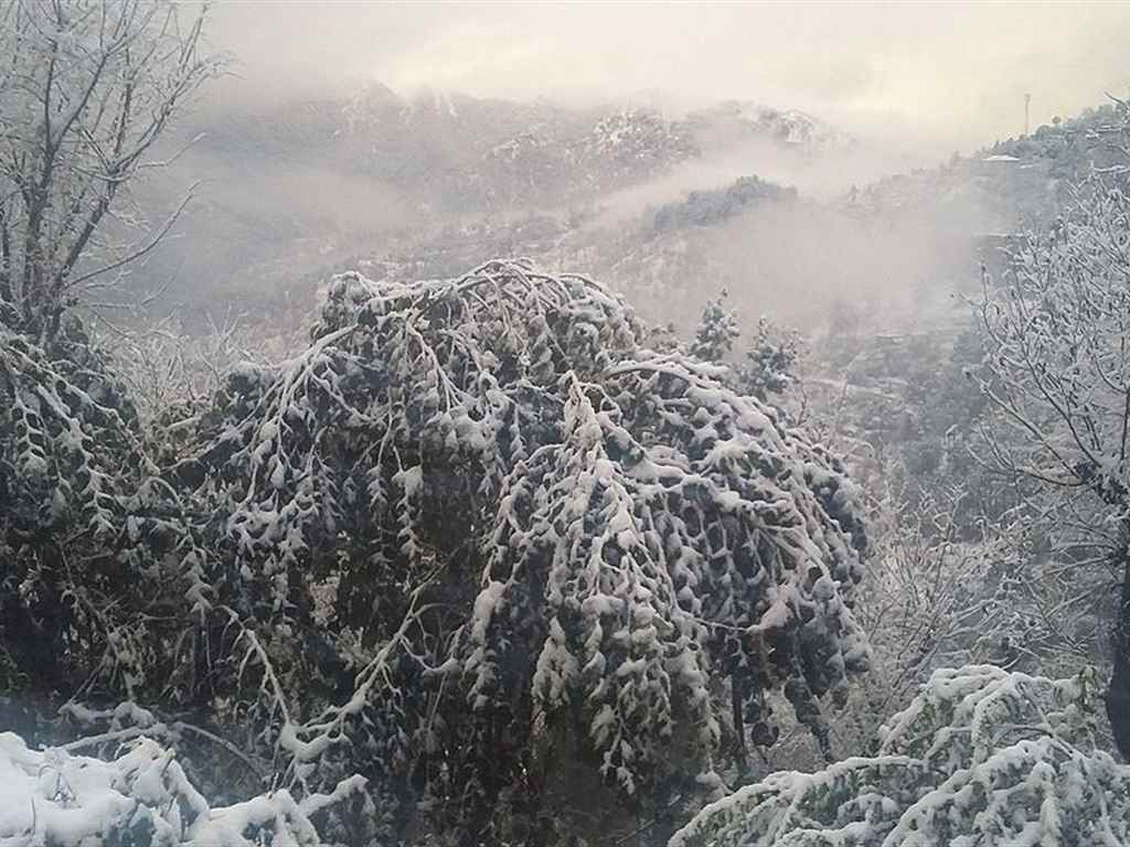Shimla Winter Holiday