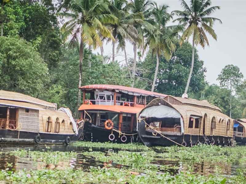 Vembanad Lake Backwaters Ride in India