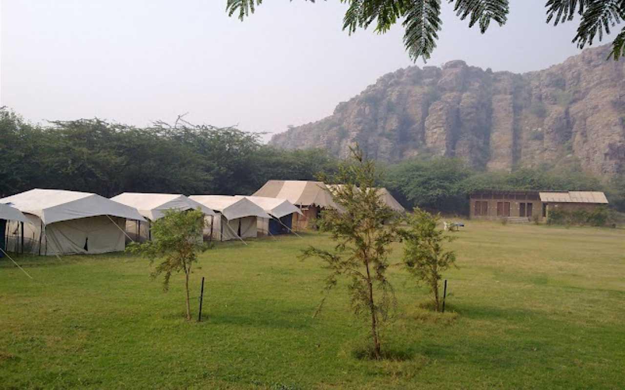 camp-wild-dhauj